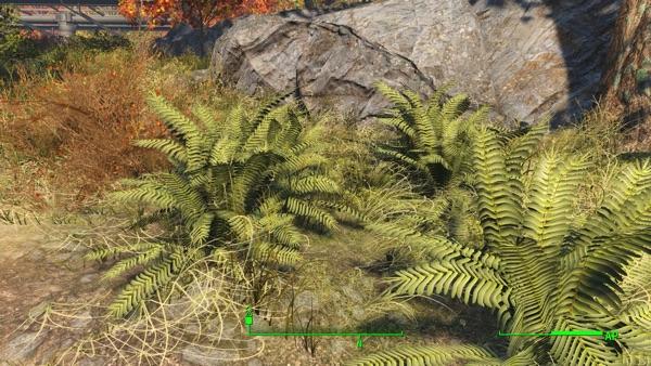 Fallout4 草や岩