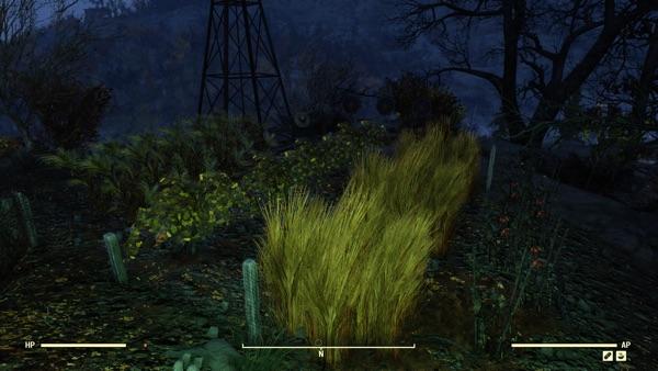 Fallout 76 コブルトン農場2