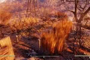 Fallout 76 農作物