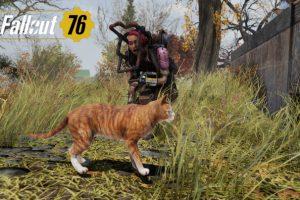 Fallout 76 猫