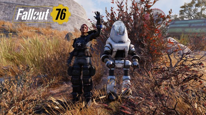 Fallout 76 中傷ボット