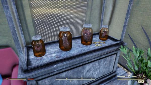 Fallout 76 瓶詰めのスコーチ