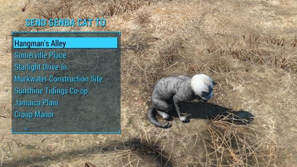Settlement Cats3