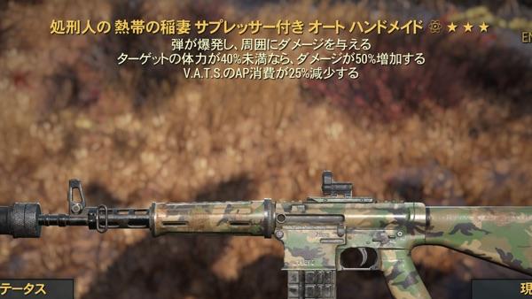 処刑人爆発AP減ハンドメイドライフル1