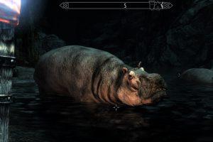 Hippos Of Skyrim